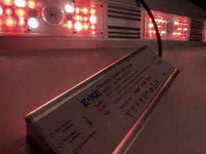Die LED-Pflanzenlampe Rail 120 von Growking wird mit externem Treiber geliefert.