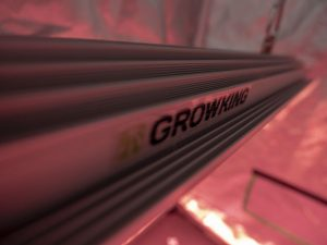 Die Kühlrippen der LED-Pflanzenlampe Rail 120 von Growking