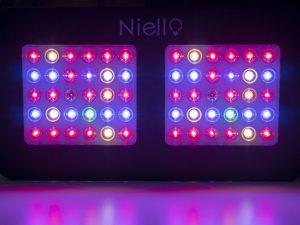 Hier sind beide Modi der LED-Pflanzenlampe von Niello eingeschaltet.