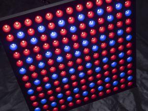 Die LED-Pflanzenlampe in Panel-form von Roleadro ist sehr leicht und handlich.