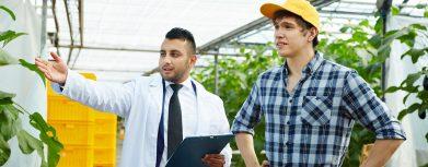 Berater für Pflanzenausleuchtung