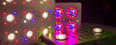 LED-Pflanzenlampen im Test