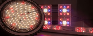 3 rot-leuchtende LED-Pflanzenlampen für den Grow mit LED